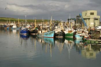 Ardglass Trawlers
