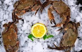 Velvet-Crabs-loose