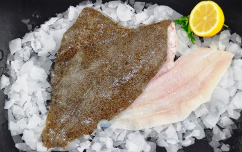 Fresh Brill Fillets