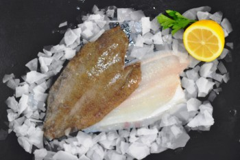 Fresh Lemon Sole Fillets