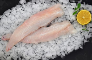 Fresh Monkfish Fillets