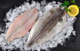round haddock butterfly fillets