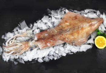 Frozen Whole Squid
